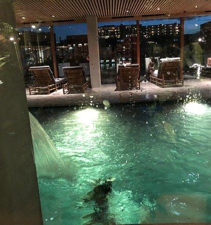 Pool Picture Of Hotel Jakarta Amsterdam Amsterdam Tripadvisor