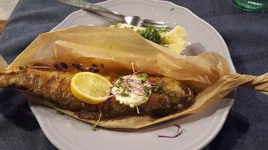 Nakryto Kuchnia Polska: Trout dish