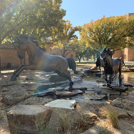 Mustangs statues in front of Centennial building.
