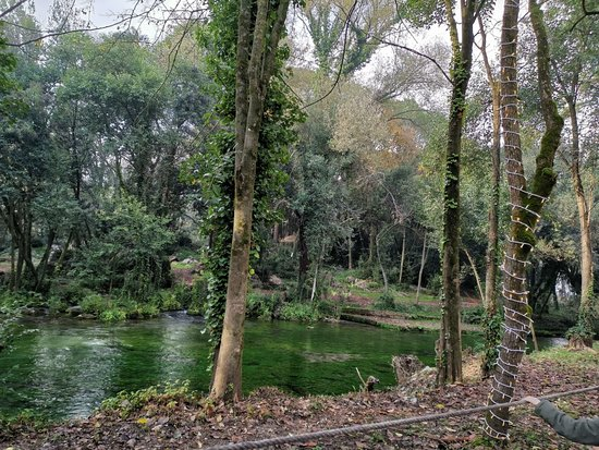 Il bosco delle favole