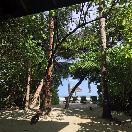 Kanifushi Island: Do you want find better place? We have already been there for 6 times but for family or couples we don't seen better place .