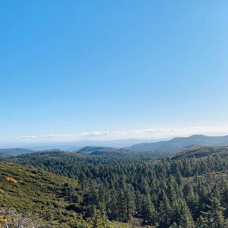 Mount Laguna, קליפורניה: No snow .. but beautiful and calm .. 