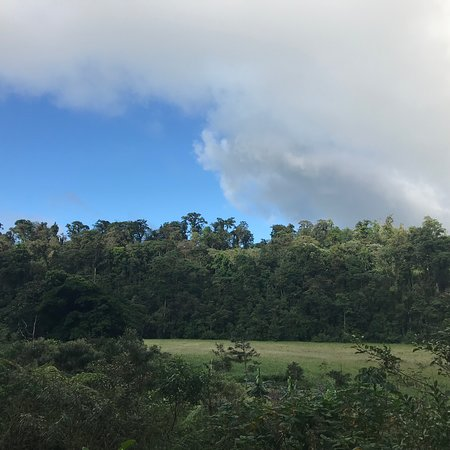 Best nature tour in 15 years in Costa Rica