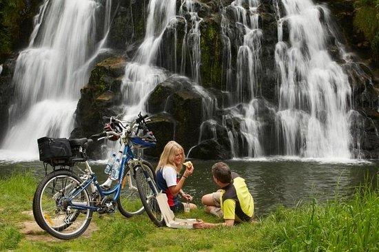 Hauraki Cycle Trail