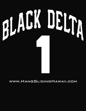 Backside of our newest tee shirt design!  Fly with Black Delta!