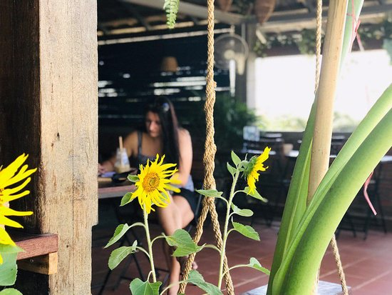Sunflower: The symbol of light and hope. Now it is giving a big smile on our Rooftop Cafe. Visit our artspace and chill out with drinks, surrounded by beautiful plants and fresh air on our rooftop cafe.