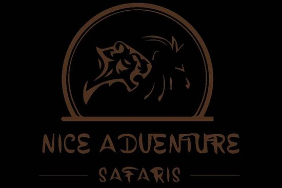 NICE ADVENTURE SAFARI