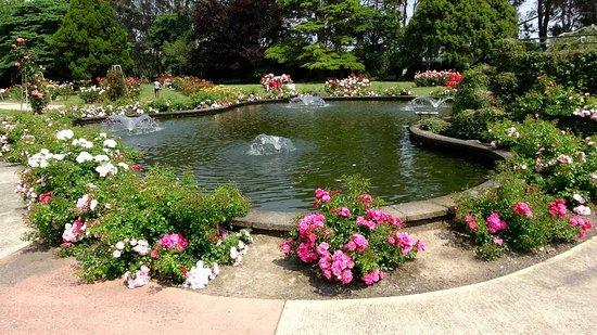 1. Victoria Esplanade Gardens