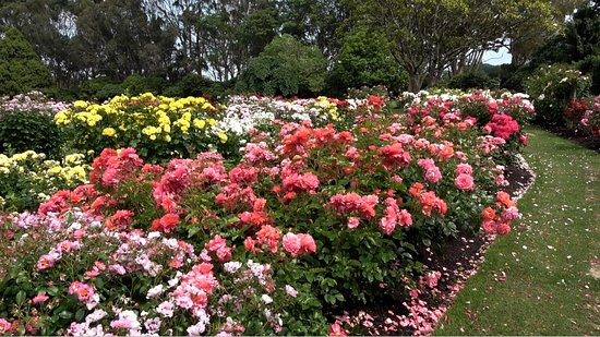 4. Victoria Esplanade Gardens