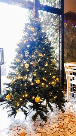 cristmass tree