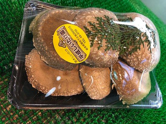 道の駅平成に隣接する平成しいたけ園で採りたての原木椎茸も販売しています。