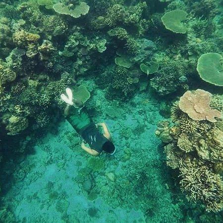 Coron, Filipíny: Atwayan Coral garden