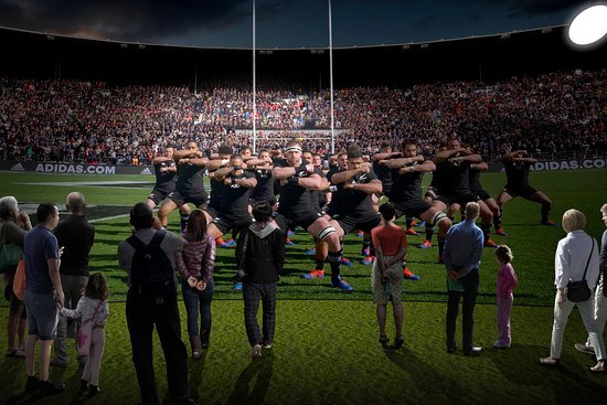 All Blacks Experience