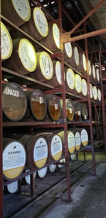 Appleton Rum Factory Tour