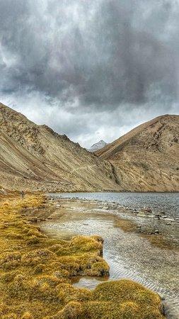 Ladakh Wildlife exploration trip 2019