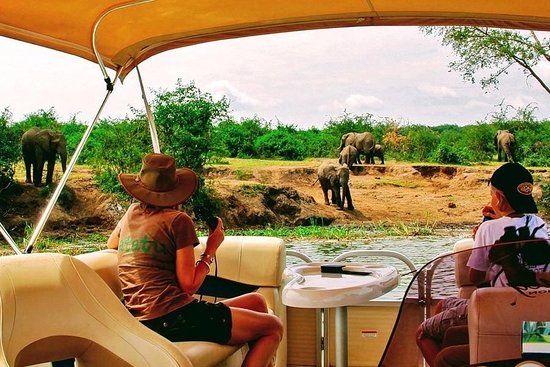 Asante Tour Safaris & Travel