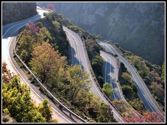 Artemisia, Grecia: Εθνική Οδός 82 (Καλαμάτα-Σπάρτη)