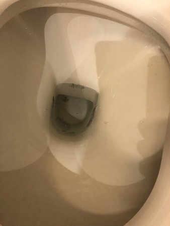Permanent stains in the toilet