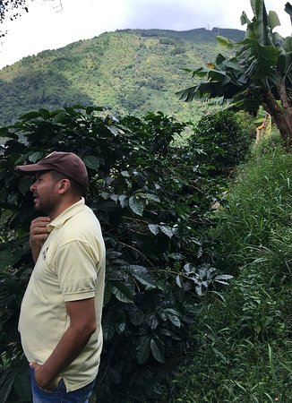 Humberto describing how to pick quality coffee beans.