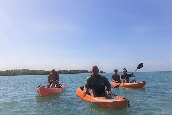 Clearbottom Mangrove Kayak & Snorkel tour: iedereen blij