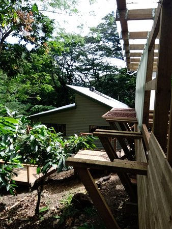 A view from the platform, where cocoa beans are sun dried. You can see the main building which houses the kitchen and tasting areas.