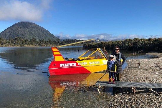 Private Tour: Waiatoto Jet Boat River Safari from Haast