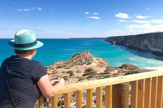 3 Day Whale Watching Tour from Adelaide