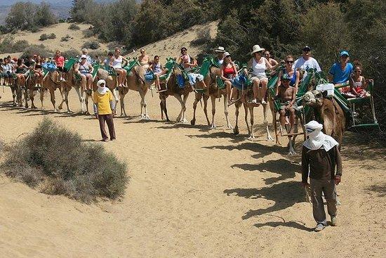 Passeio de camelo nas Dunas de...