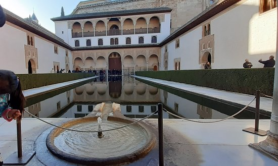 Alhambra and Generalife Private Guided Tour with optional Nasrid Palaces: Patio del lago desde la entrada.