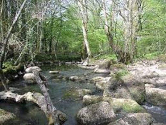 Etang de Bois Pouvreau et son chaos granitique