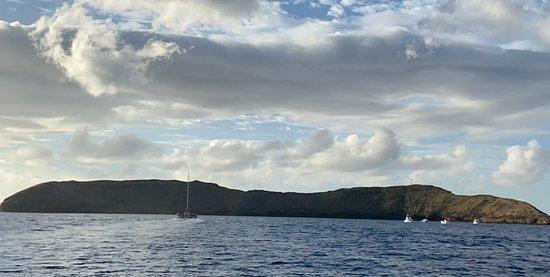 Molokini and Turtle Arches Snorkeling Trip from Ma'alaea Harbor Görüntüsü
