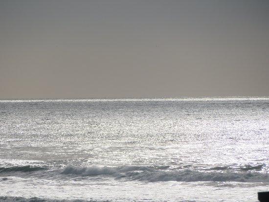 San Gregorio State Beach, December 2019