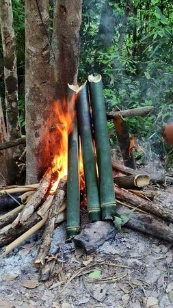 Voen Sai, Cambodia: We burn bamboo to prepare the soup for dinner. Bamboo soup is the main dish for the minority tribe inhabitants