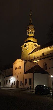 Tallinn Ghost and Legends Walking Tour: Estonian dome church