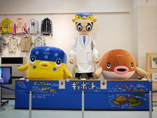 Tateyama, اليابان: 展示物