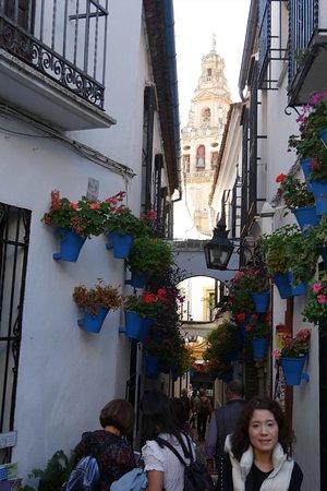ユダヤ人街の花の小道