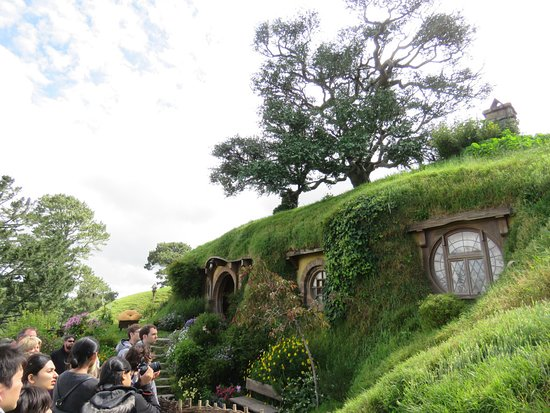 Hobbiton™ Movie Set 2-Hour Walking Tour from Shires Rest: That tree on top is artificial! I was surprised!