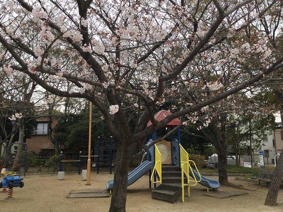 Shinkawa Kyuyo Park