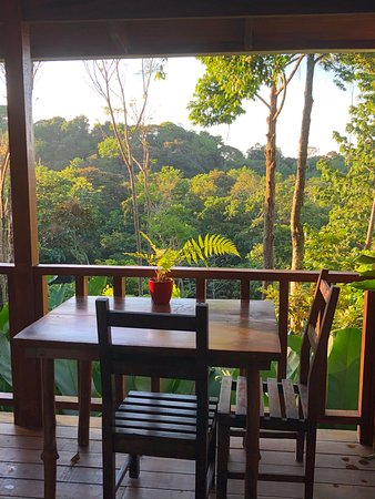 Table for two overlooking the jungle.