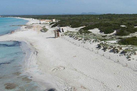 Excursion d'une journée à Majorque, plage Es Trenc