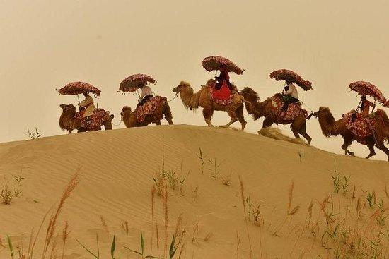 Privat dagstur til Dawakol-ørkenen...