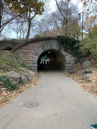 Нью-Йорк, Нью-Йорк: Central Park