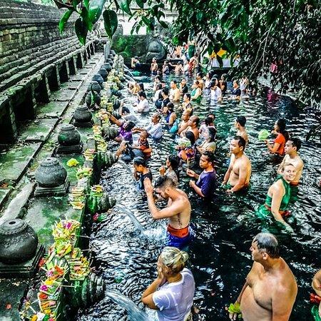 Bali Surya Transport