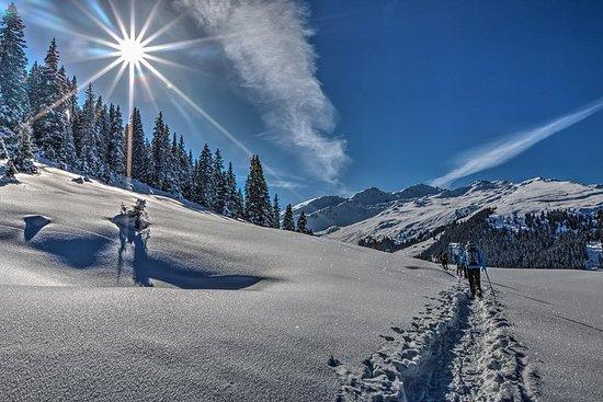 Guidad vinterunderlands snöskoventyr ...
