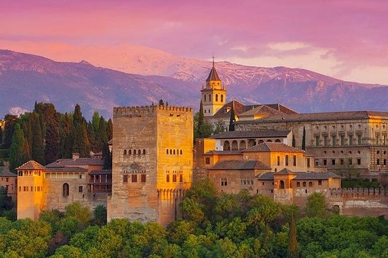 Gita giornaliera a Granada con ingresso