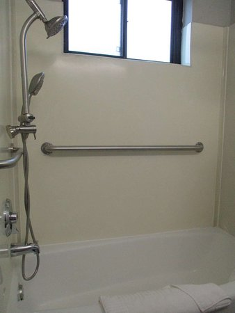 Queen Mobility Accessible Bathroom