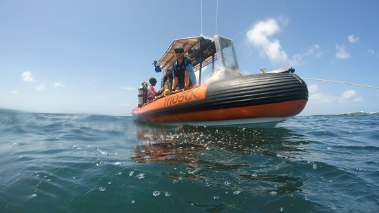 The Dive boat that took us from surf launch to Shag Rocks.