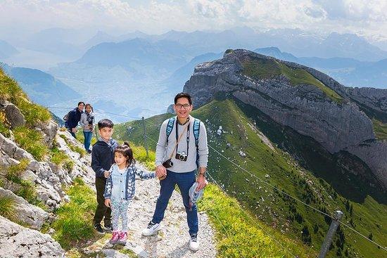 皮拉图斯山极限探险之旅,徒步旅行,绳索公园和阿尔卑斯山雪橇