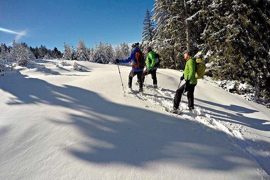 Raquetas de nieve en los Pirineos desde Barcelona