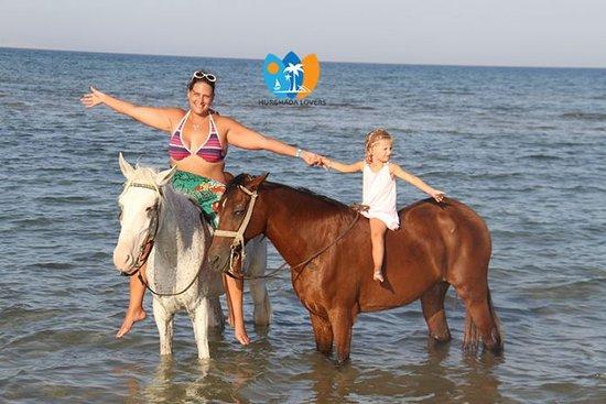 Horse Riding Hurghada Egypt best price Sea Horse & Camel Riding Hurghada at Beach – Hurghada Excursions https://hurghadalovers.com/horse-riding-hurghada/